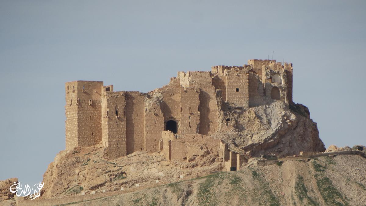 قلعة تدمر