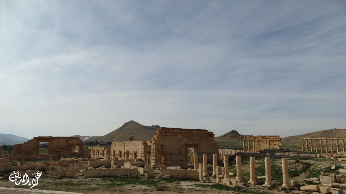 صورة من آثار تدمر